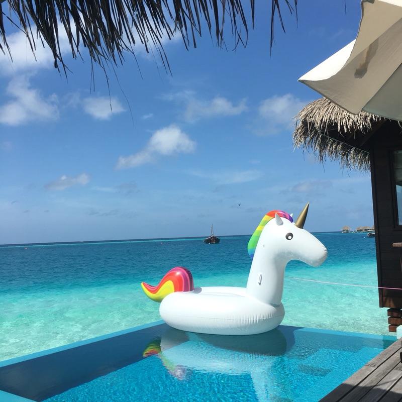 Free Pump Inflatable Unicorn Flamingo Swan Giant Pool